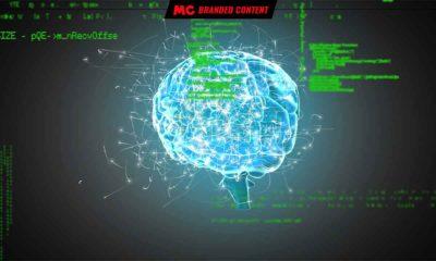 Los tres cerebros del neuromarketing